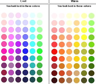 What Is My Personal Color Palette Choose Your Best Colors